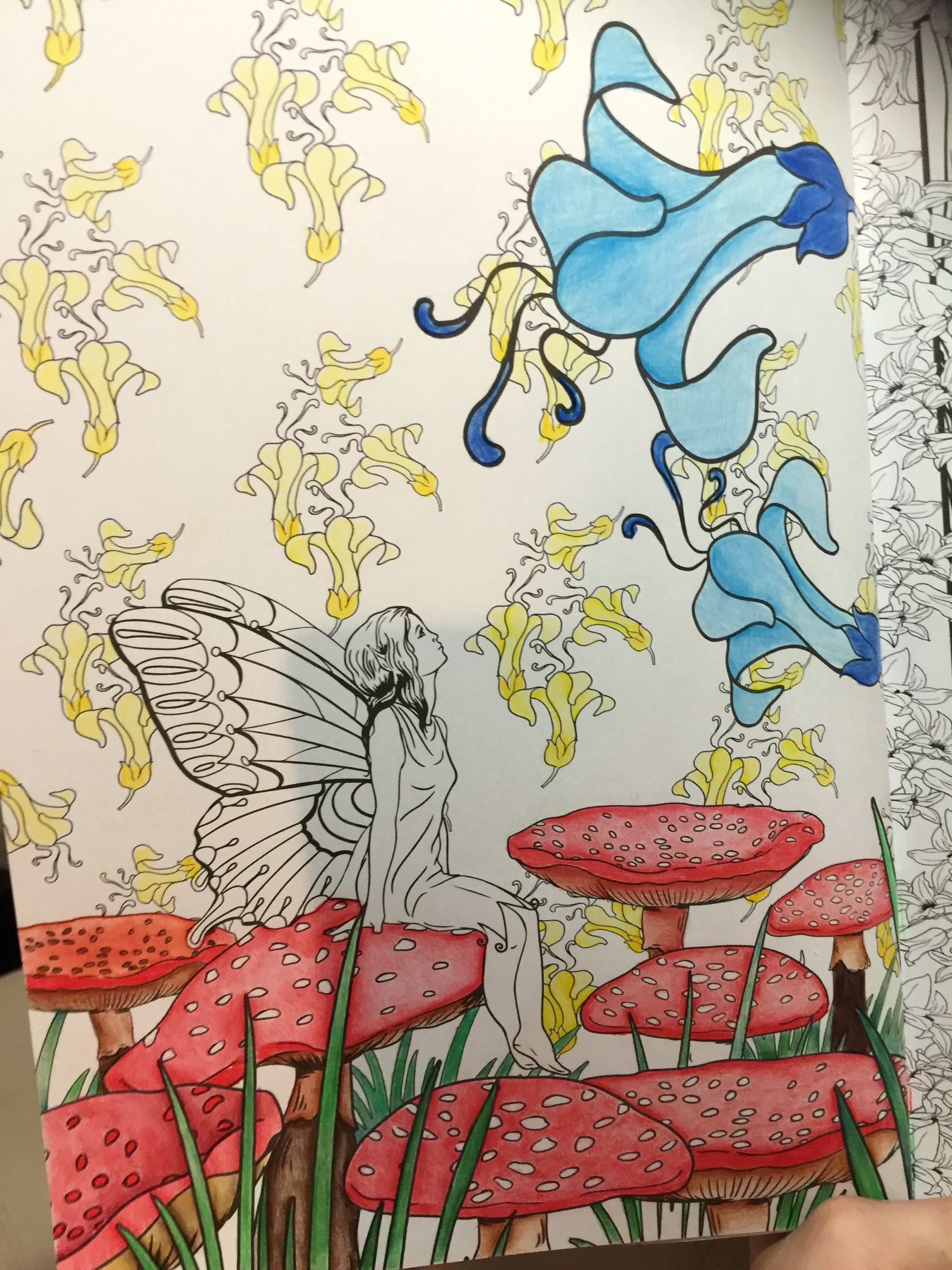 The enchanted forest coloring book review - Enchanted Forest Coloring Colouring Color Coloured Pencils Mindfulness Reviews Art Art Therapy Stress Relief Adult Coloring