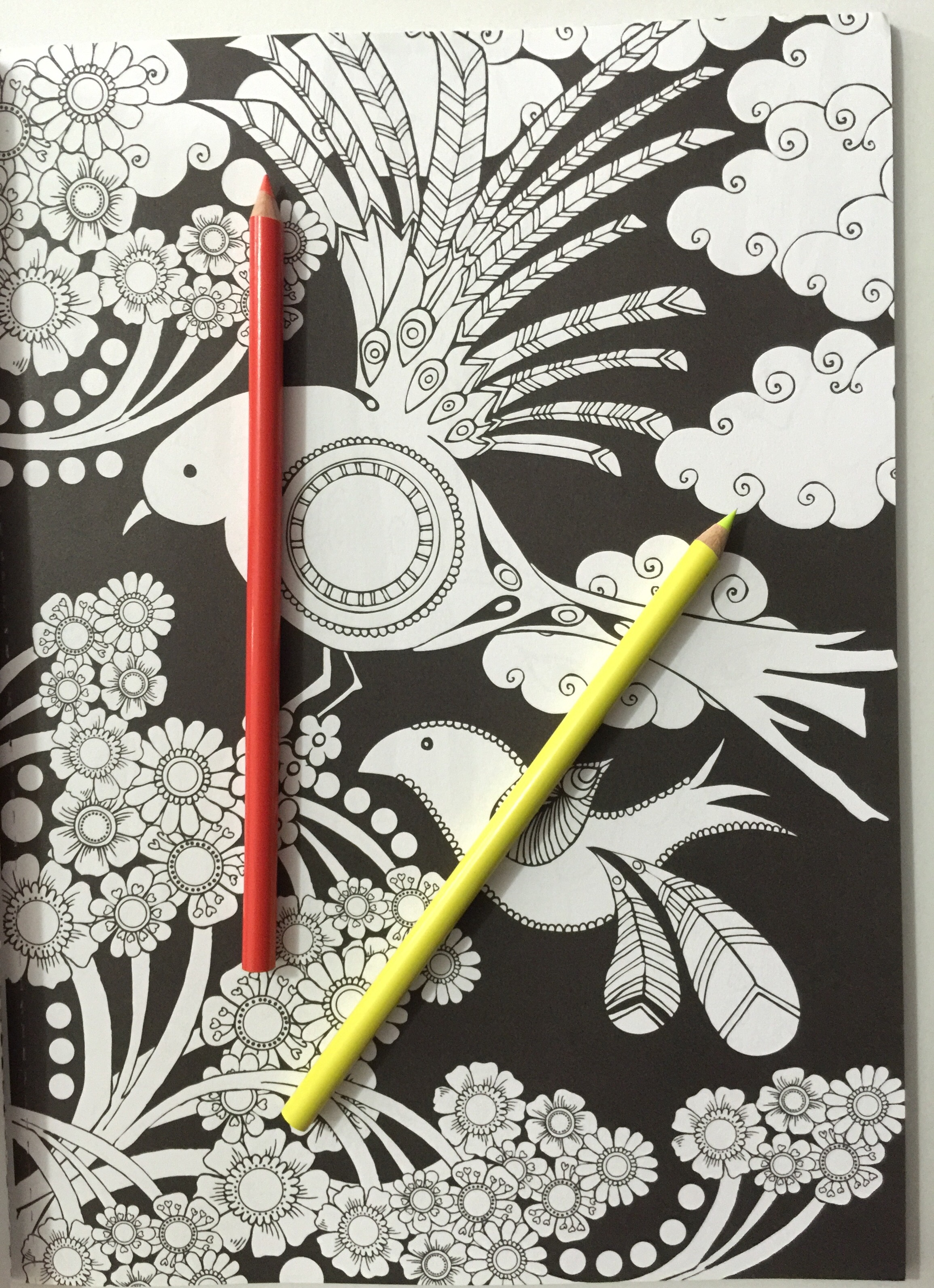 colouring coloring adult reviews  midnight garden creative haven books review adult coloring pencils stress relief mindfulness black backgrounds