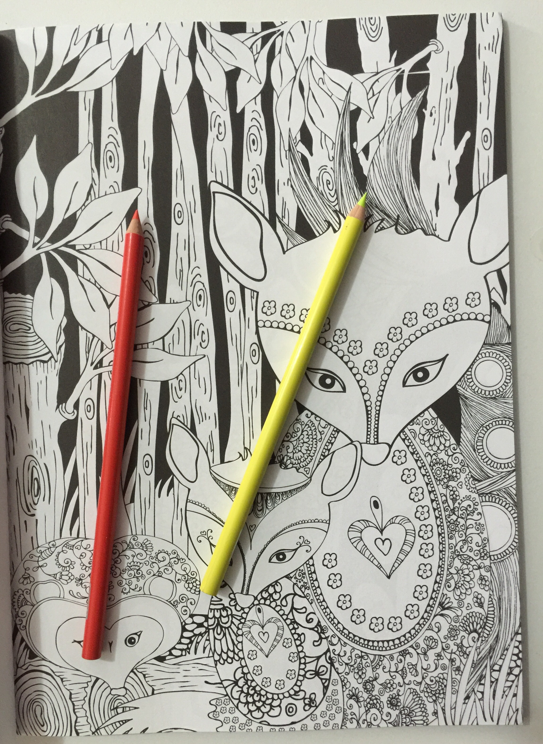 Colouring Coloring Adult Reviews Midnight Garden Creative Haven Books Review Pencils Stress Relief Mindfulness