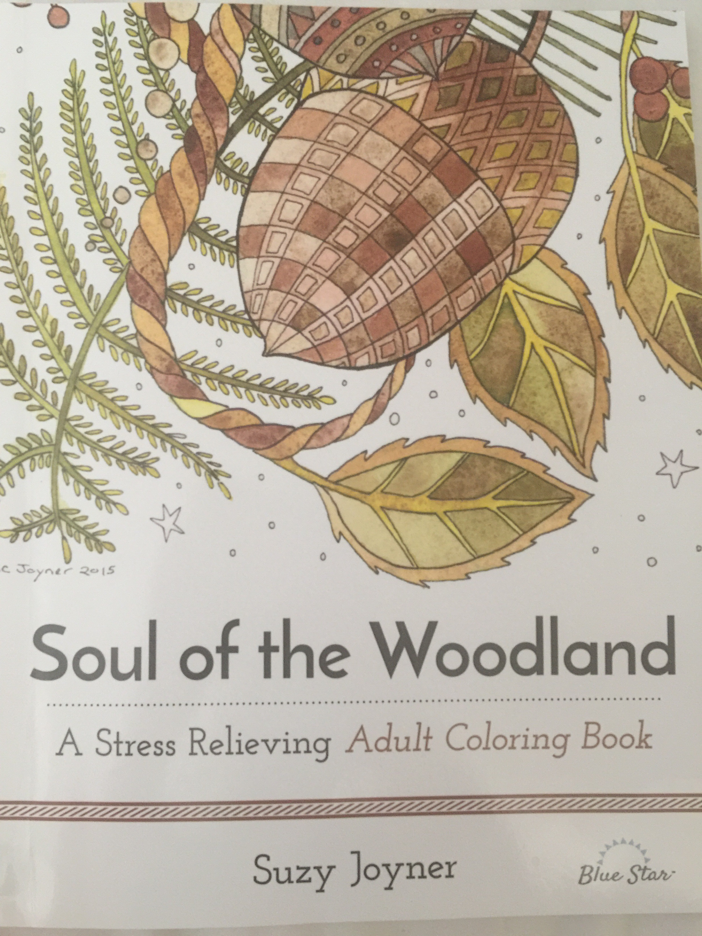 colouring adult color books book reviews pencils anti stress   animals forest coloring relaxation