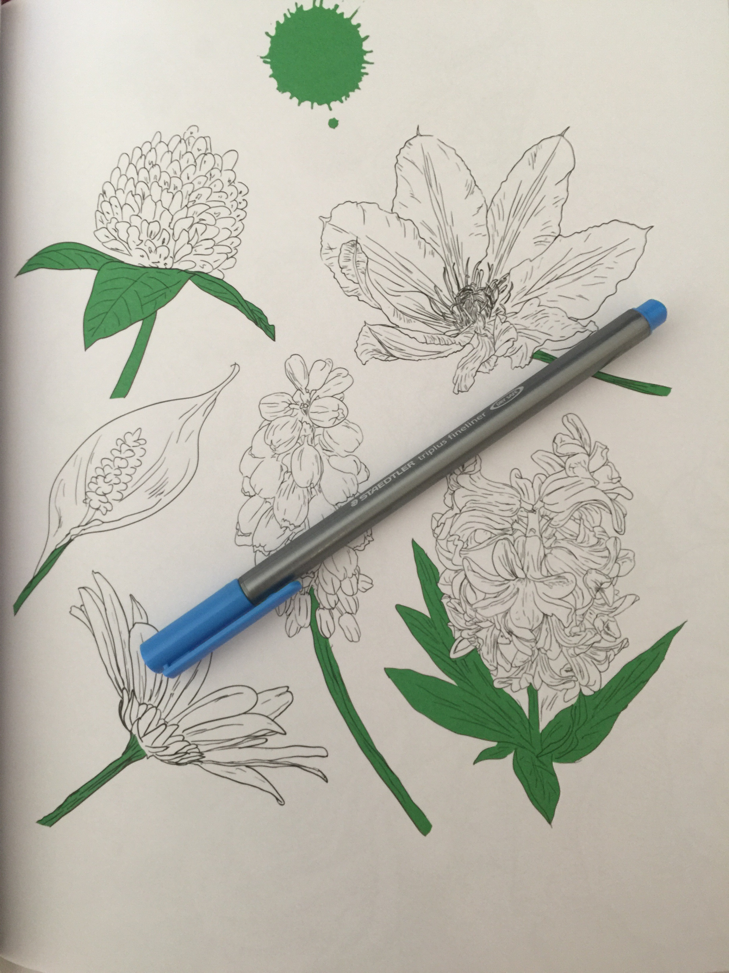 adult coloring colouring book review pencils pens markers stress relief reviews art therapy