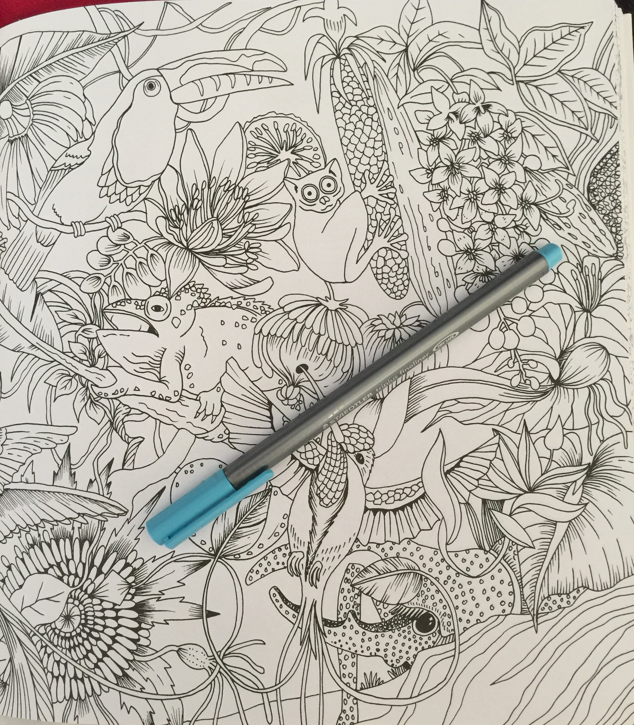adult colouring complete review art therapy color coloring pencils stress relief mindfulness animals plants