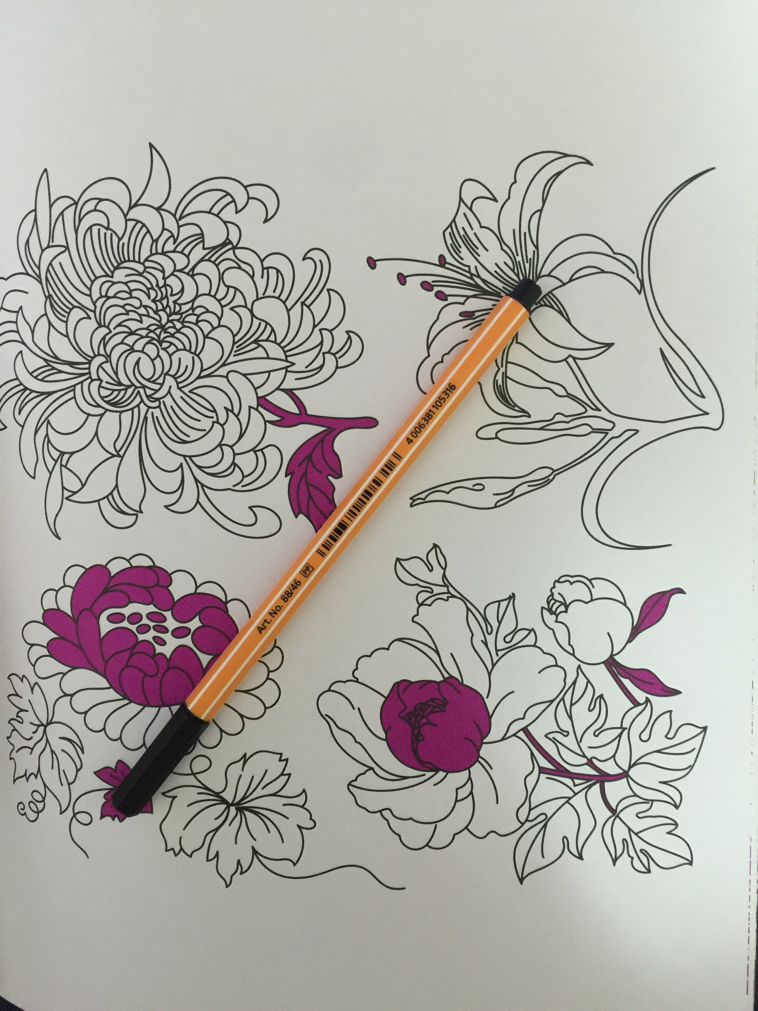 Colouring pencils for adults reviews - Coloring Reviews Adult Flowers Completed Garden Color Coloring Colour Pencils Art Review Therapy Anti Stress