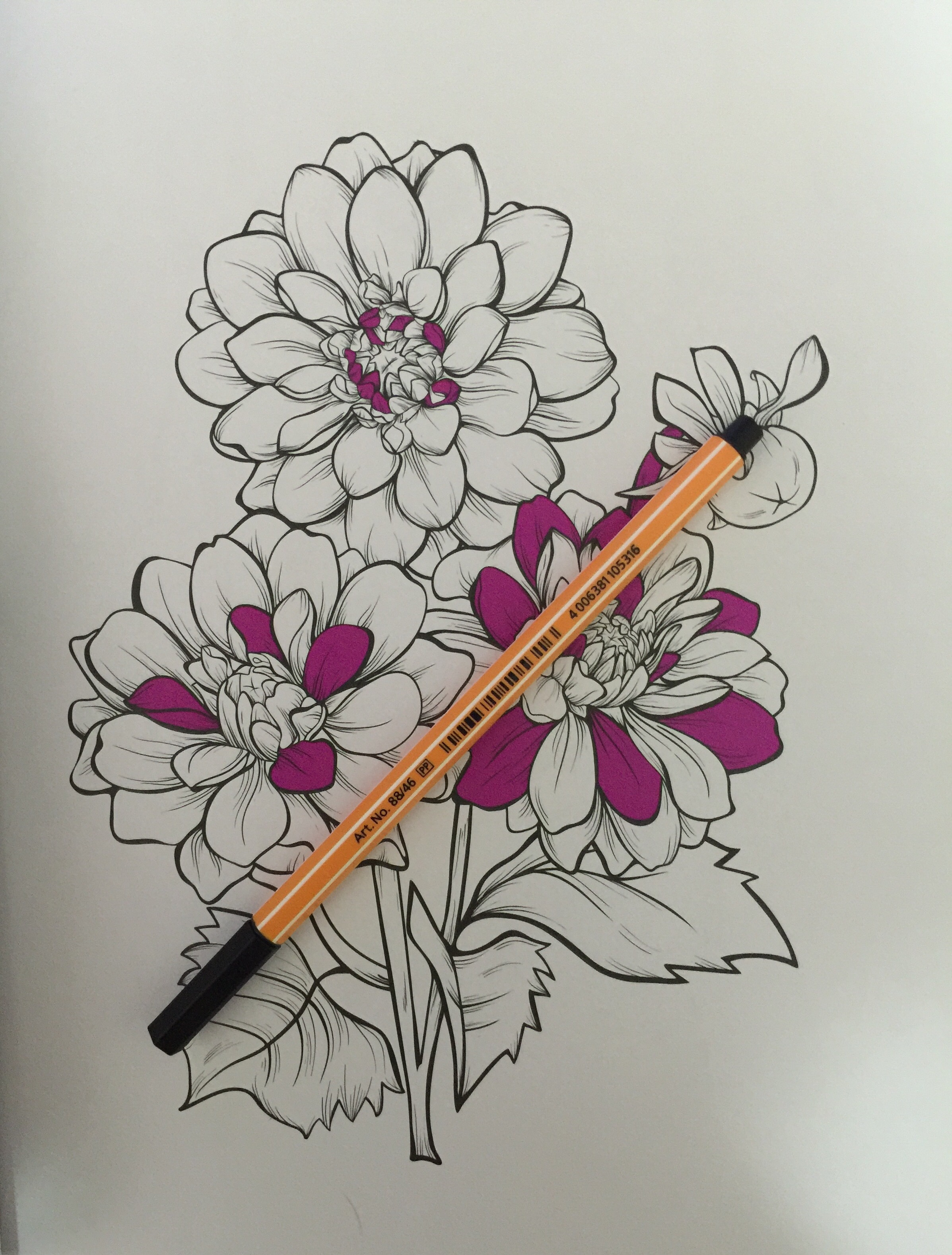coloring reviews adult flowers completed garden color coloring colour pencils art review therapy anti stress
