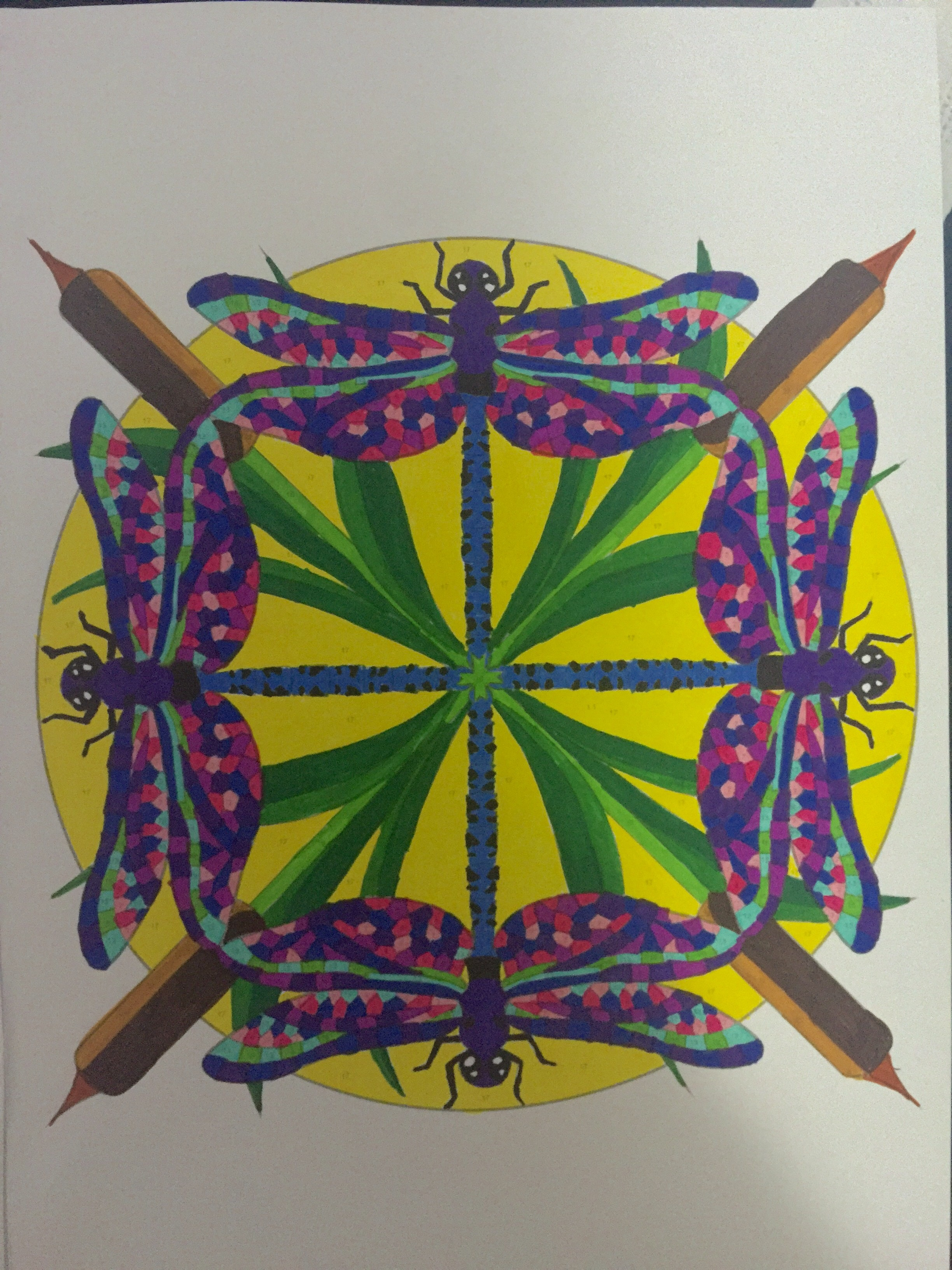 Creative Haven Mandala Color By