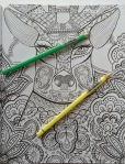 coloring adult colouring animals disney jungle book color art therapy colour colouring pencils completed