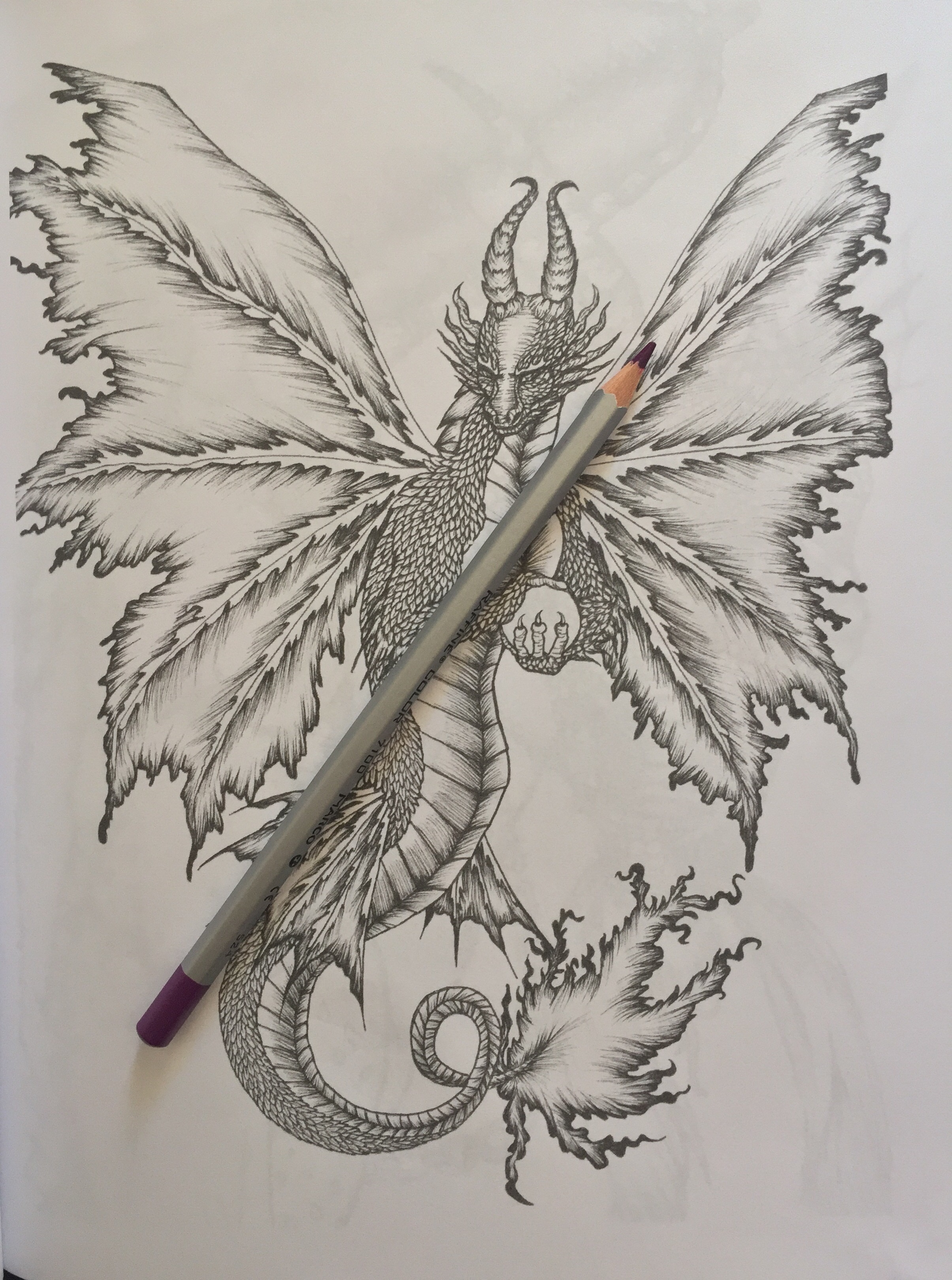 Colouring pencils for adults reviews - Fantasy Coloring Adult Pages Colour Pencils Colouring Color Relaxing Art Therapy Adult Color Mythology Colouring Reviews