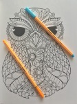 coloring mindfulness colour art therapy colouring reviews mandalas completed pencils therapy stress relief