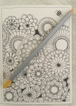 Adult color fantasy Coloring art therapy coloured  mandalas pencils finished quotes Coloring pastels nature  water based markers magic reviews animals colouring woodland pictures inspirational  adult relaxing art therapy pencils alcohol pens  coloring stress relief completed calming patterns colour