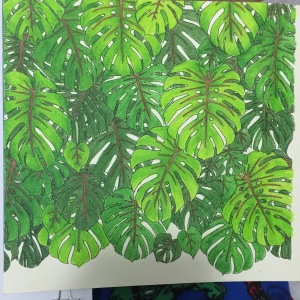 Rainforest coloring book watercolor pencil