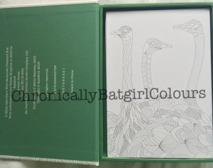 Wild Savannah coloring book postcard edition